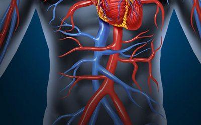 ¿Qué son los traumatismos vasculares?